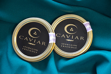 Sturgeon Friendly Caviar